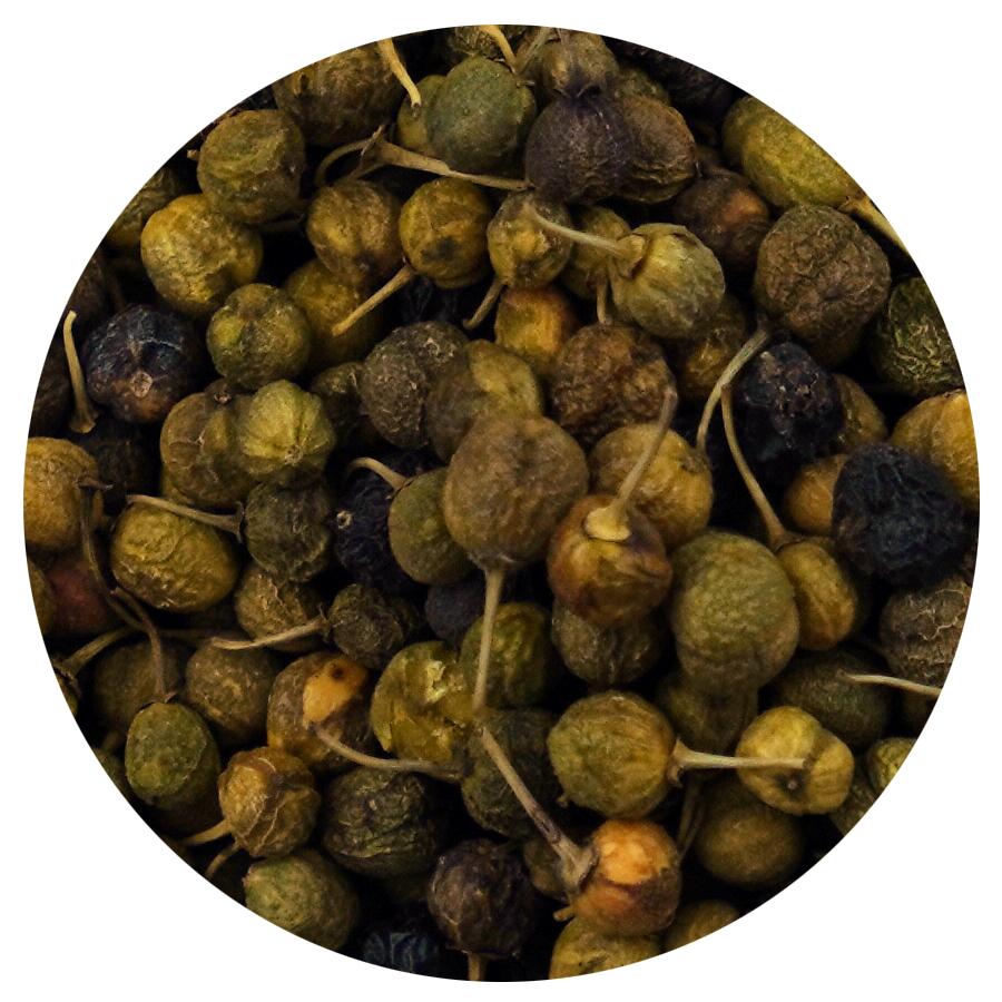 Buckthorn-Berries